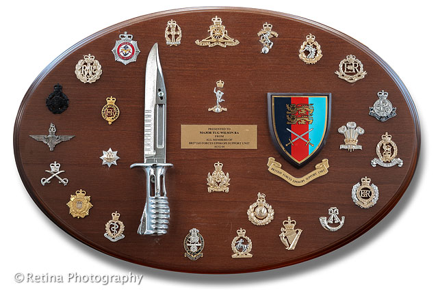 Display Of British Army Cap Badges Mounted on Wooden Frame