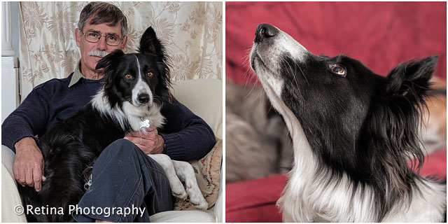 Pet Dog Owner With Collie Dog In Chair