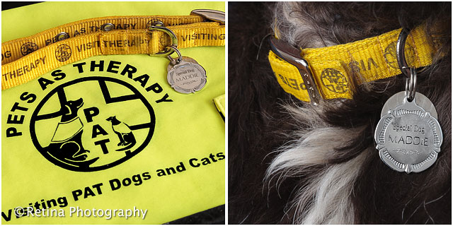 Pets As Therapy Dog Jacket And Award Medal