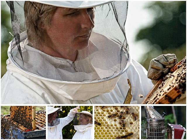 Weekend Passions Beekeepers Editiorial Montage