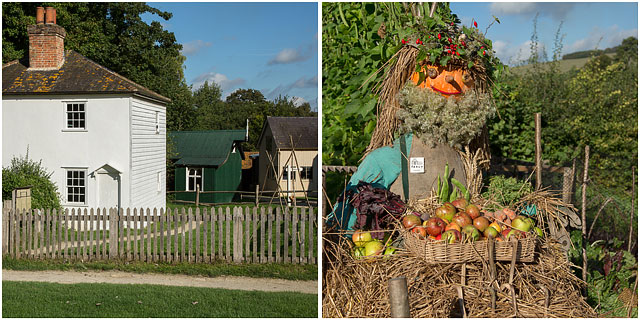 Whittakers Cottages From Ashtead Surrey With Scarecrow And Garden Produce