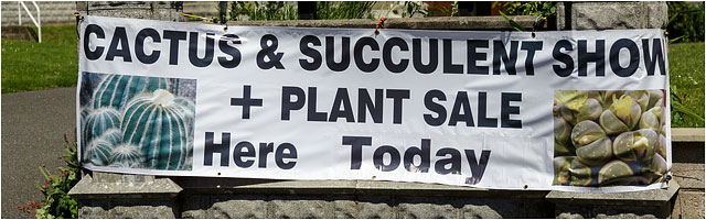 Banner For Portsmouth Branch British Cactus And Succulents Society June 2014 Show