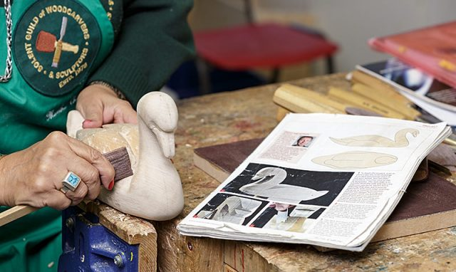 female woodcarver carving a swan with printed reference magazine in the foreground